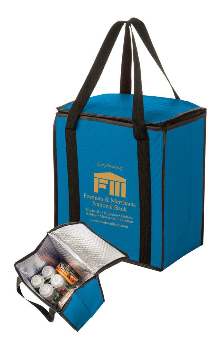 Insulated Soft Cooler